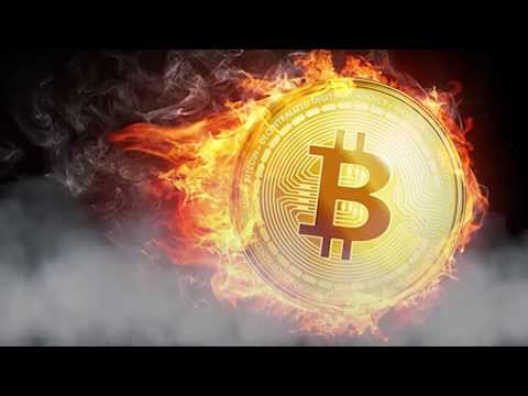 Bitcoin Price Hits 10,000$