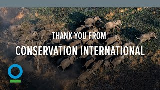 Thank You from Conservation International