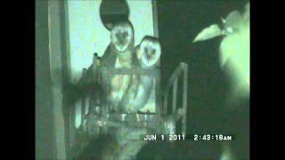 Yori Ranches Owlets June 1, 2011