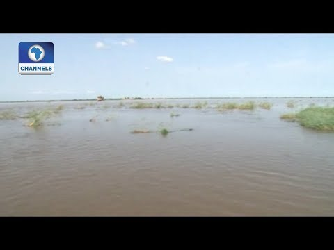 Patigi Community In Penury As Persistent Flood Washes Away Farmlands |Eyewitness Report|