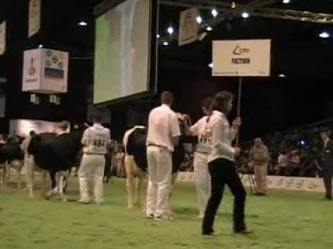 HOLLAND MASTERS SALE 2012