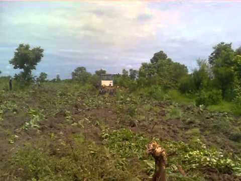 Clearing virign land in Ghana