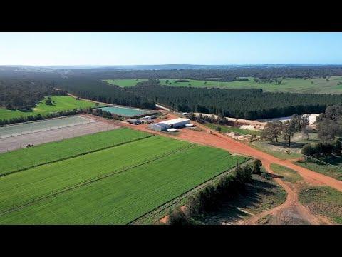 A Day on a Lettuce Farm in Western Australia