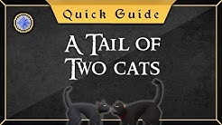 [Quick Guide] A tail of two cats