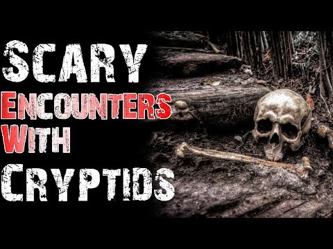 Scary and Chilling Encounters With Cryptids (Shapeshifter, Cave Dweller)   Mr. Davis