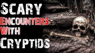 Scary and Chilling Encounters With Cryptids (Shapeshifter, Cave Dweller) | Mr. Davis