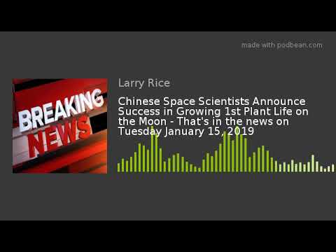 chinese-space-scientists-announce-success-in-growing-1st-plant-life-on-the-moon---that's-in-the-news