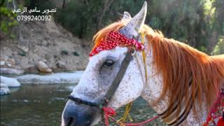 اغنية 3 غزلان يعيني مع صور اردنية جميلة تستحق المشاهدة