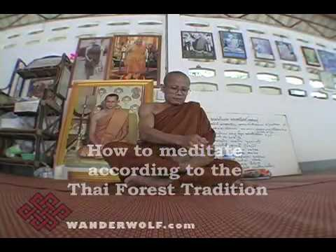 How To Meditate According to the Thai Forest Tradition