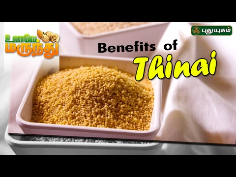 Health benefits of Thinai Unave Marundhu 18-02-2017 Puthuyugam TV Show Online