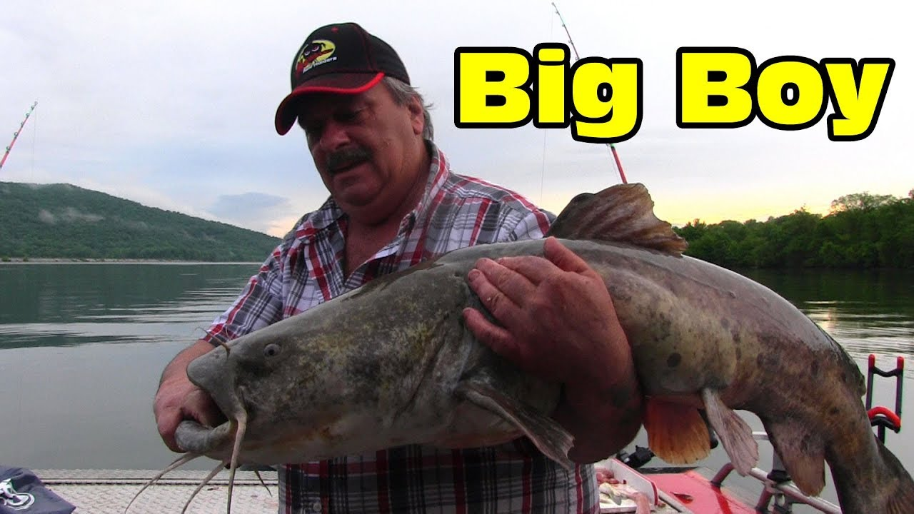 Watch this video to see how I find and catch big catfish ... - photo#23