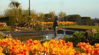 dog friendly beach and holiday cottages at Cleethorpes 2012_0001.wmv