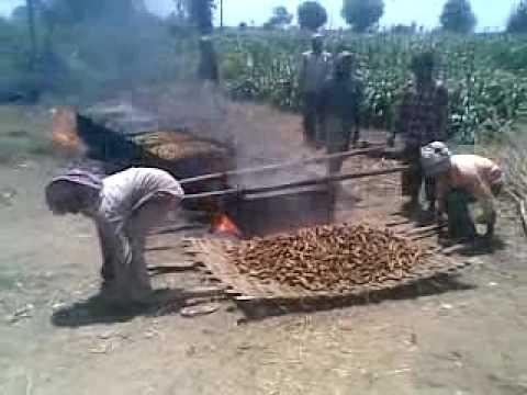 On-farm turmeric processing