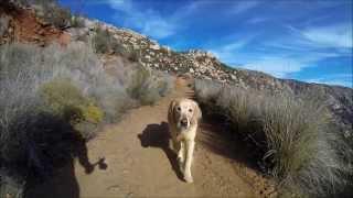 El Capitan Open Space Preserve Trail