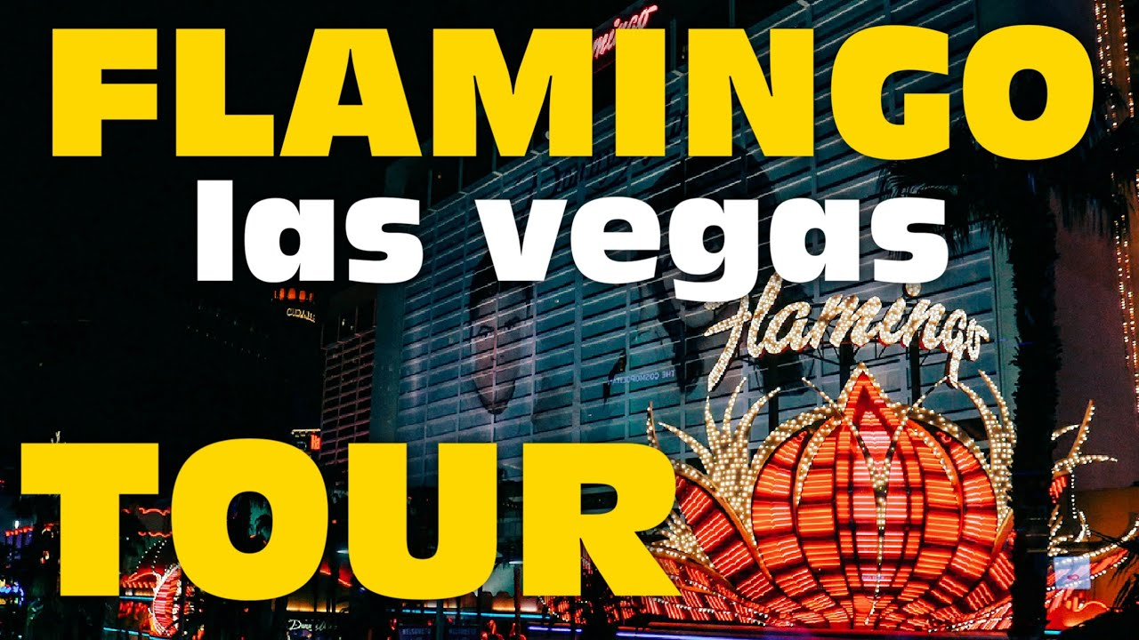 Flamingo Las Vegas Resort and Room Tour and Review - Still Worth it in 2020?