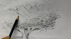 Der Baum | Ganz einfach zeichnen lernen 2