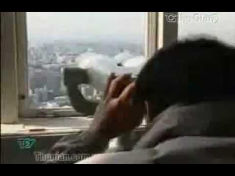 Video Du lịch Nhật Bản - Japan Travel - DulichAnz.com