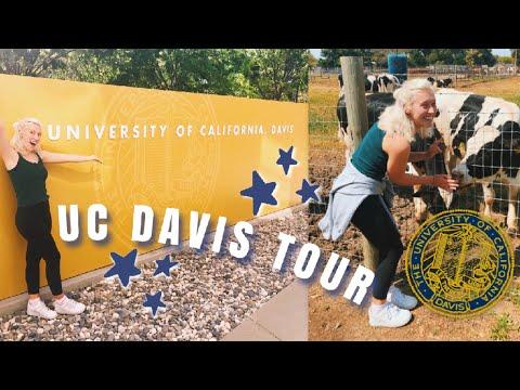 UC Davis Vlog | Campus Tour, Downtown, +more!