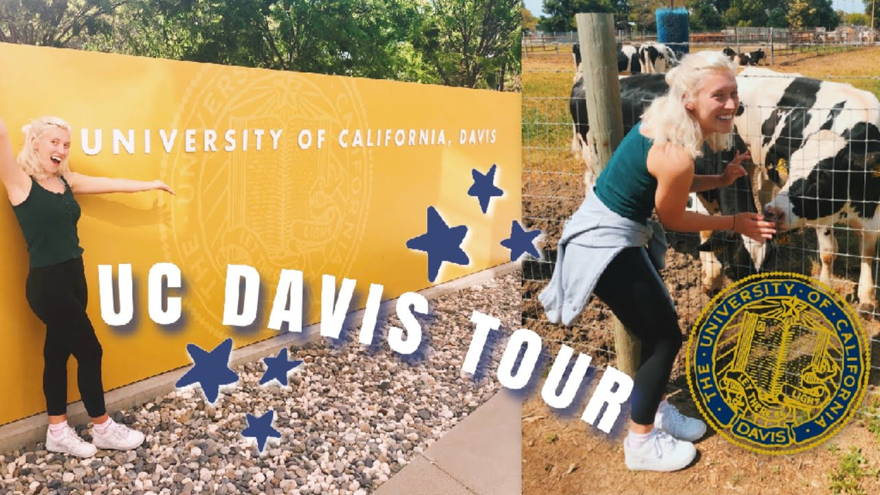 UC Davis Vlog | Campus Tour, Downtown, +more! - YouTube Uc Davis Campus Tour