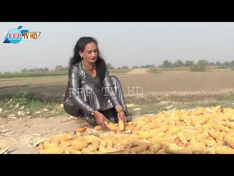 tharki   Aurat  ki umar dekho aur kam dekho Hot Woman    Village Life   Rural Life Pakistan   FFP TV