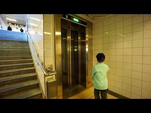 Sweden, Stockholm, Skogås Train Station, SMW elevator - going up to platform level