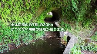 上郷開発についての動画