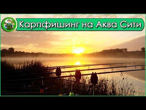 Рыбалка На Водоеме Аква Сити. Стрим