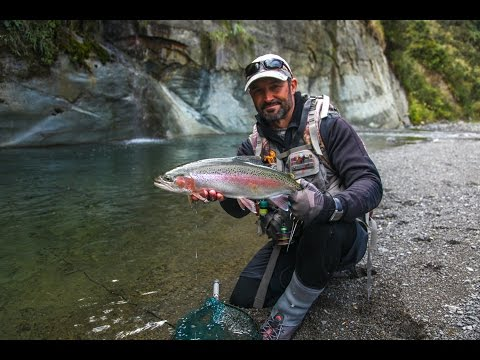 Fly fishing New Zealand - 'CHASING RAINBOWS'