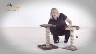 Cat Scratcher Testing by Pets Corner
