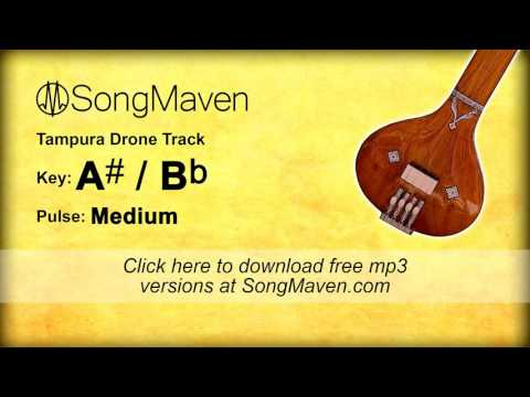Tampura Drone, Key of A#, Medium Pulse