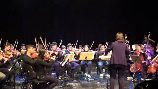 Orquestra de Cordas GSM - Concerto in D Major RV121 1 mov.