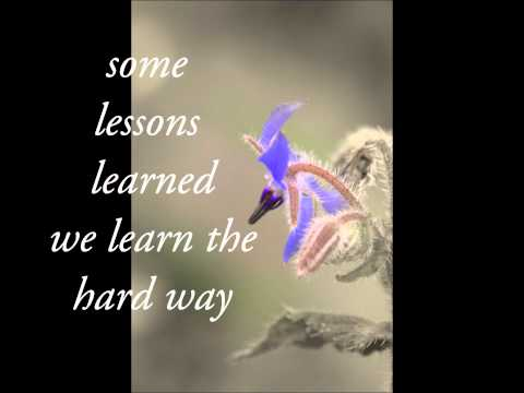 SomeLessons Melody Gardot Lyrics