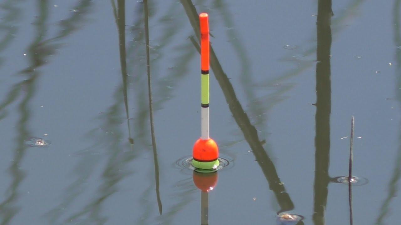 ловля белого амура весной на поплавочную удочку видео