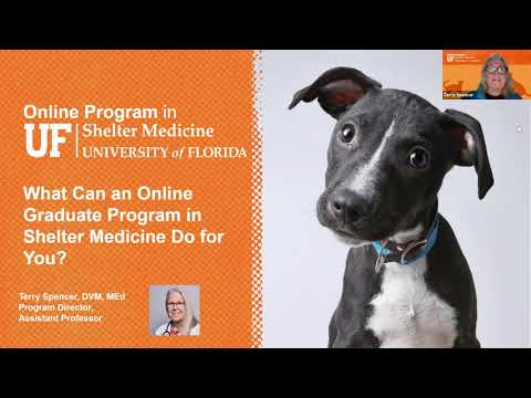 What Can an Online Graduate Program in Shelter Medicine Do F