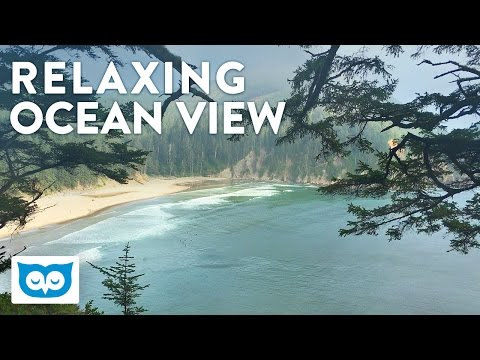 Relaxing Ocean Atmosphere - 2 Hours Ocean, Waves, and Bird Sounds