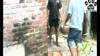 Download Video Liputan Garda Satwa - Jagal Anjing MP3 3GP MP4