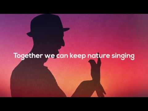 Charity song 'Let Nature Sing' debuts on the UK Singles Chart