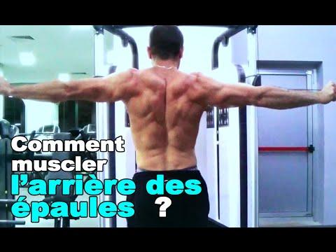 Musculation : comment travailler l'arrière des épaules ?