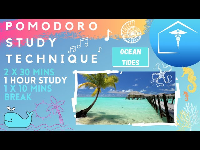 Pomodoro Technique Ocean Waves Beach & Sun Hd: Timer & Breaks Focus & Concentration For Productivity