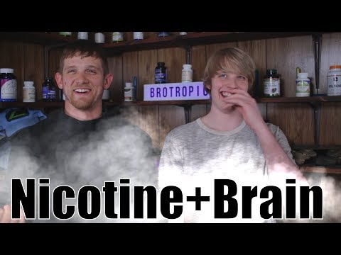 nicotine-as-a-nootropic