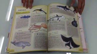 Книга АТЛАС ЖИВОТНЫХ. Издательство: Пеликан