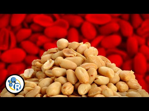 Why are peanut allergies so dangerous?