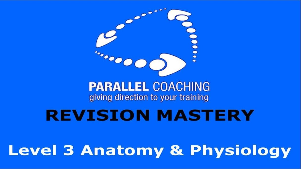 Level 3 Anatomy and Physiology - Revision Mastery Series - YouTube