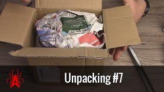 Unpacking #7 dorosły samiec P. murinus usambara