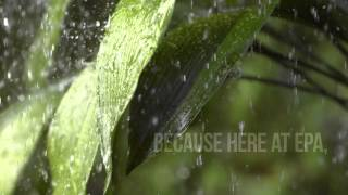 Earth Day Every Day: Acid Rain