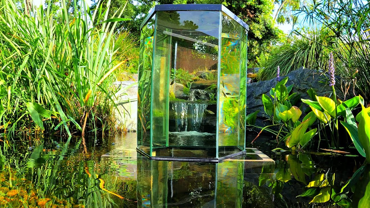 Building an Inverted Aquarium inside my Backyard Pond!