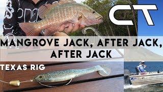 Ep 5 - Mangrove Jack after Jack after Jack - Chasing Tide - Texas Rig
