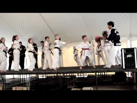 Lemont  T- USA MARTIAL ARTS demo team