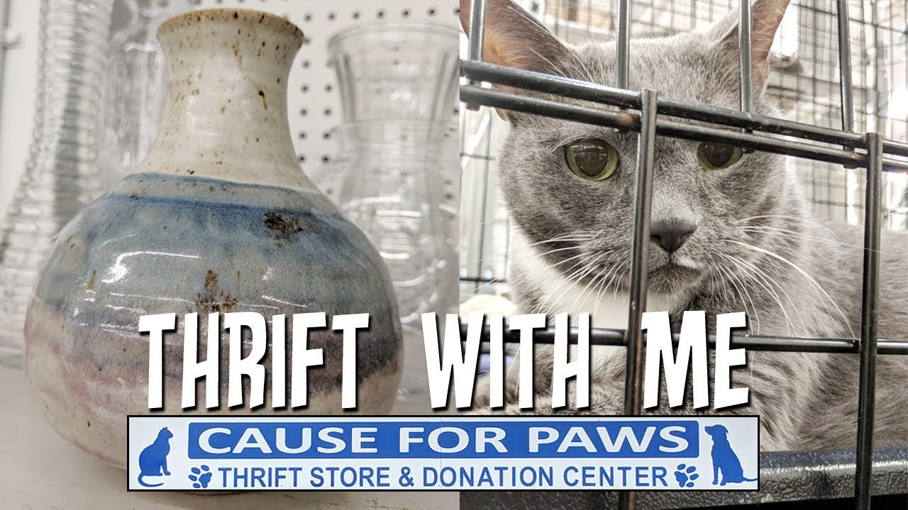 Thrift With Me Home Decor Haul Cause For Paws Store Raleigh NC
