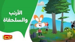 أناشيد تربوية تعليمية - كان الأرنب